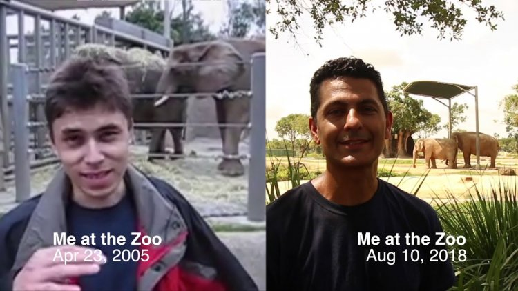 Remember 'Me at the Zoo'?: First YouTube video posted 16 years ago